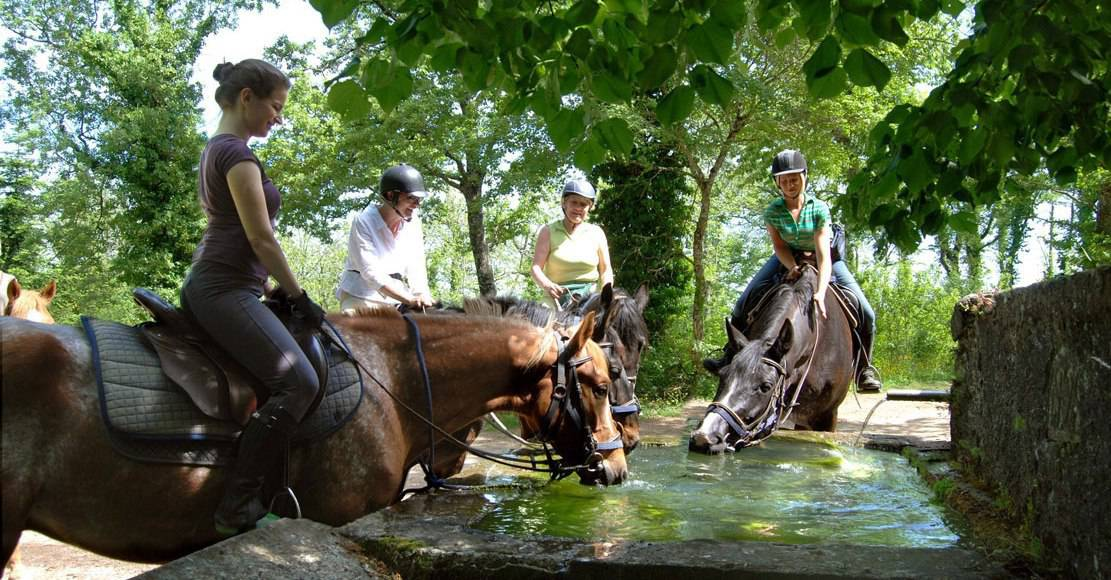 Horse Riding Holiday in Tuscany, Montieri
