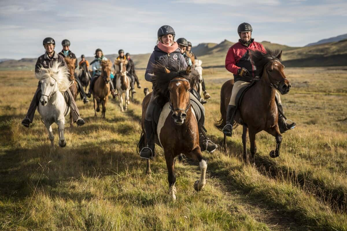Horse Riding Holiday with Free Running Herd in the Icelandic Highlands, Iceland