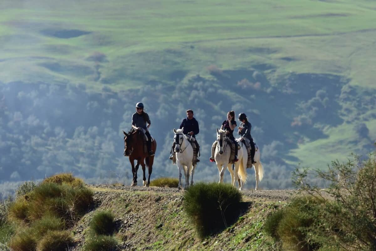 Riding in Sierra de las Nieves Natural Park, Andalusia