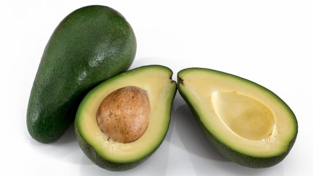 Can Horses Eat Avocados?